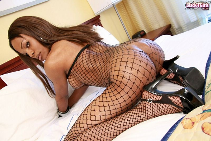 black-tgirls-discount